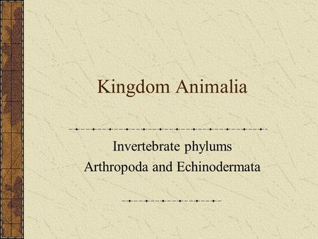 Kingdom Animalia Invertebrate phylums Arthropoda and Echinodermata.