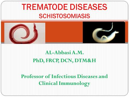 AL-Abbasi A.M. PhD, FRCP, DCN, DTM&H Professor of Infectious Diseases and Clinical Immunology TREMATODE DISEASES SCHISTOSOMIASIS.