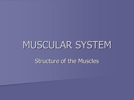MUSCULAR SYSTEM Structure of the Muscles. Muscles Comprise a large part of the human body Comprise a large part of the human body –Nearly half our body.