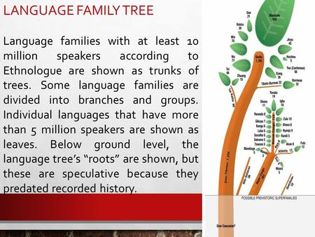 LANGUAGE FAMILY TREE Language families with at least 10 million speakers according to Ethnologue are shown as trunks of trees. Some language families are.