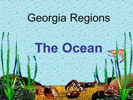 Georgia Regions The Ocean created by www.teachingr4real.com.