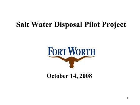 1 Salt Water Disposal Pilot Project October 14, 2008.