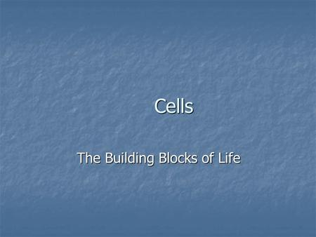 Cells The Building Blocks of Life. A cell A cell.