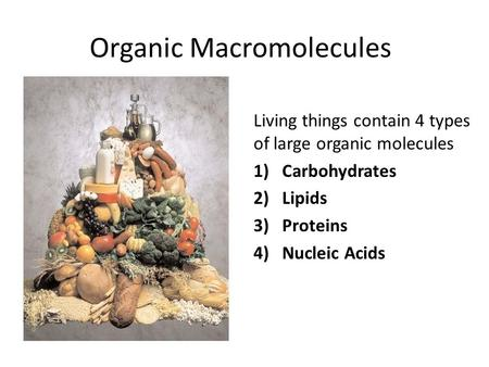 Organic Macromolecules Living things contain 4 types of large organic molecules 1)Carbohydrates 2)Lipids 3)Proteins 4)Nucleic Acids.