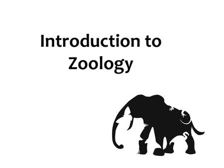 Introduction to Zoology. How does Zoology Fit in?