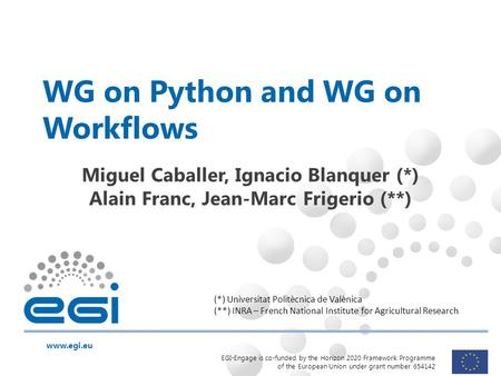 Www.egi.eu EGI-Engage is co-funded by the Horizon 2020 Framework Programme of the European Union under grant number 654142 WG on Python and WG on Workflows.