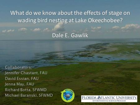What do we know about the effects of stage on wading bird nesting at Lake Okeechobee? Dale E. Gawlik Collaborators: Jennifer Chastant, FAU David Essian,
