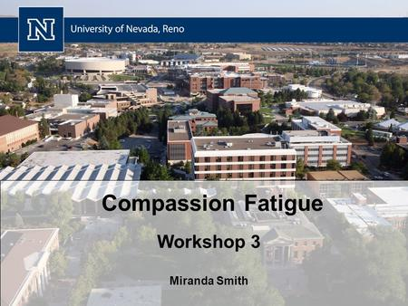 Compassion Fatigue Workshop 3 Miranda Smith. Review Group / Organizational Coping Strategies Cases Questions Survey