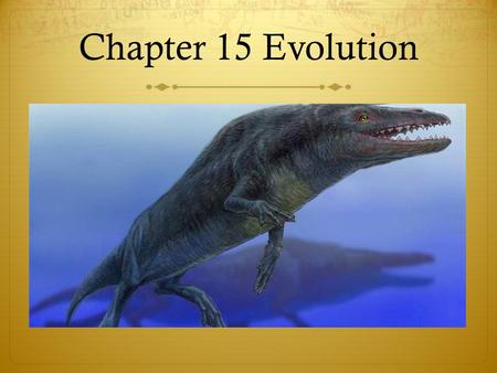 Chapter 15 Evolution. Chapter 15 study guide  Key Vocabulary:  Adaptation  Natural selection  Homologous structure  Analogous structure  Vestigial.