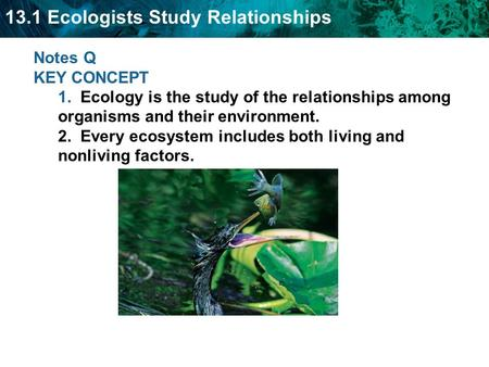 13.1 Ecologists Study Relationships Notes Q KEY CONCEPT 1. Ecology is the study of the relationships among organisms and their environment. 2. Every ecosystem.