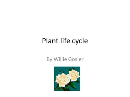 Plant life cycle By Willie Gosier. Plants needs are leaves, soil, water and sunlight to live. Plants are important too. They can grow food to feed people.