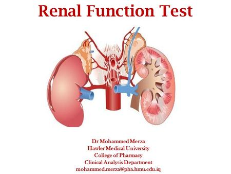 Dr Mohammed Merza Hawler Medical University College of Pharmacy Clinical Analysis Department Renal Function Test.