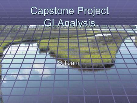 Capstone Project GI Analysis C Team. Leadership Forum Local/State GIS planners Planning/ZoningUtilities Citizen Groups USACoE Local Developers Parks &