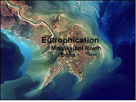 Eutrophication Nutrient pollution in the Mississippi River Delta Eutrophication : Mississippi River Delta.
