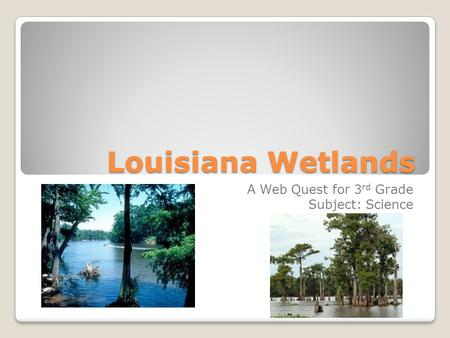 Louisiana Wetlands A Web Quest for 3 rd Grade Subject: Science.