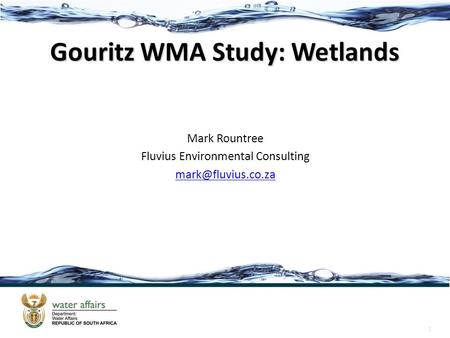 1 Gouritz WMA Study: Wetlands Mark Rountree Fluvius Environmental Consulting