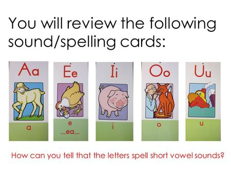 You will review the following sound/spelling cards: How can you tell that the letters spell short vowel sounds?