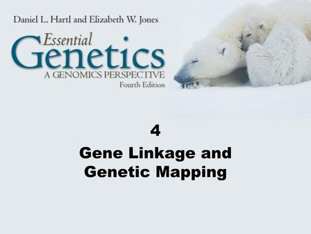 4 Gene Linkage and Genetic Mapping