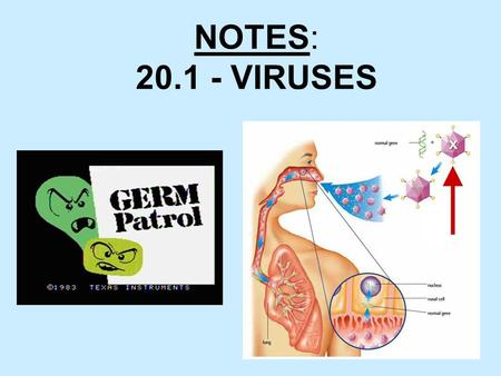1 NOTES: 20.1 - VIRUSES. 2  Vocabulary –Virus –Capsid –Lytic cycle –Lysogenic cycle –Retrovirus  Key Concepts –What is a virus? –How do viruses reproduce?