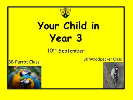 Your Child in Year 3 10 th September 3B Parrot Class 3K Woodpecker Class.