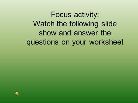 Focus activity: Watch the following slide show and answer the questions on your worksheet.