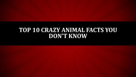 TOP 10 CRAZY ANIMAL FACTS YOU DON'T KNOW. 10 INSECTS HAVE ALIEN BLOOD Actually it isn't blood at all, but rather something called hemolymph. It's been.