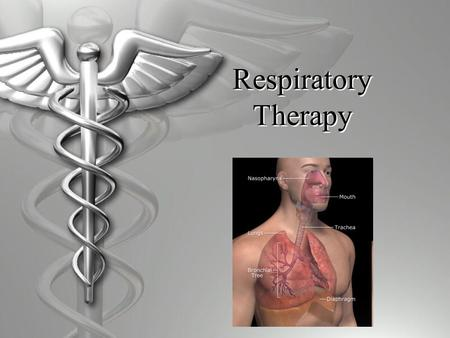 Respiratory Therapy. What is a Respiratory Therapist?  Healthcare professional  Diagnosis, treat, and educate patients  Work in  Hospitals  Emergency.