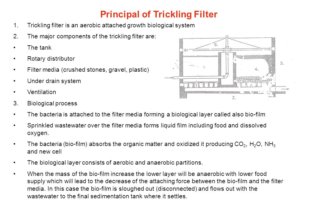 Types of trickling filters Low rate T.FHigh rate T.F One StageTwo Stage With intermediate clarifierWithout intermediate clarifier