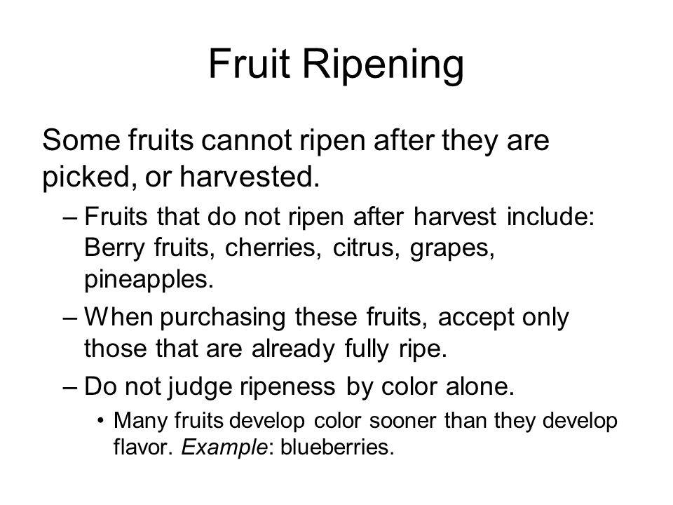 Fruit Ripening Some fruits can ripen at least partially after they are picked, or harvested.