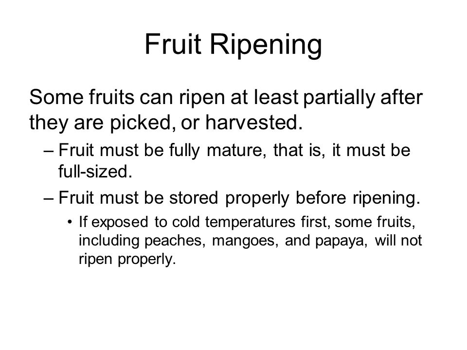 Fruit Ripening Fruits that ripen after harvest include: –Apples, bananas, cantaloupe, kiwi, mangoes, peaches, pears, plums.