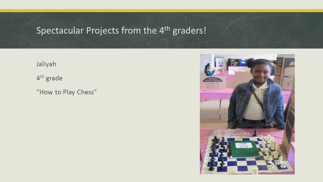 Awesome Projects from the 5 th graders! Christle 5 th grade Pollution