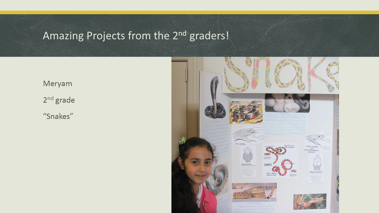 Exciting Projects from the 3 rd graders! Chloe 3 rd grade Dinosaurs