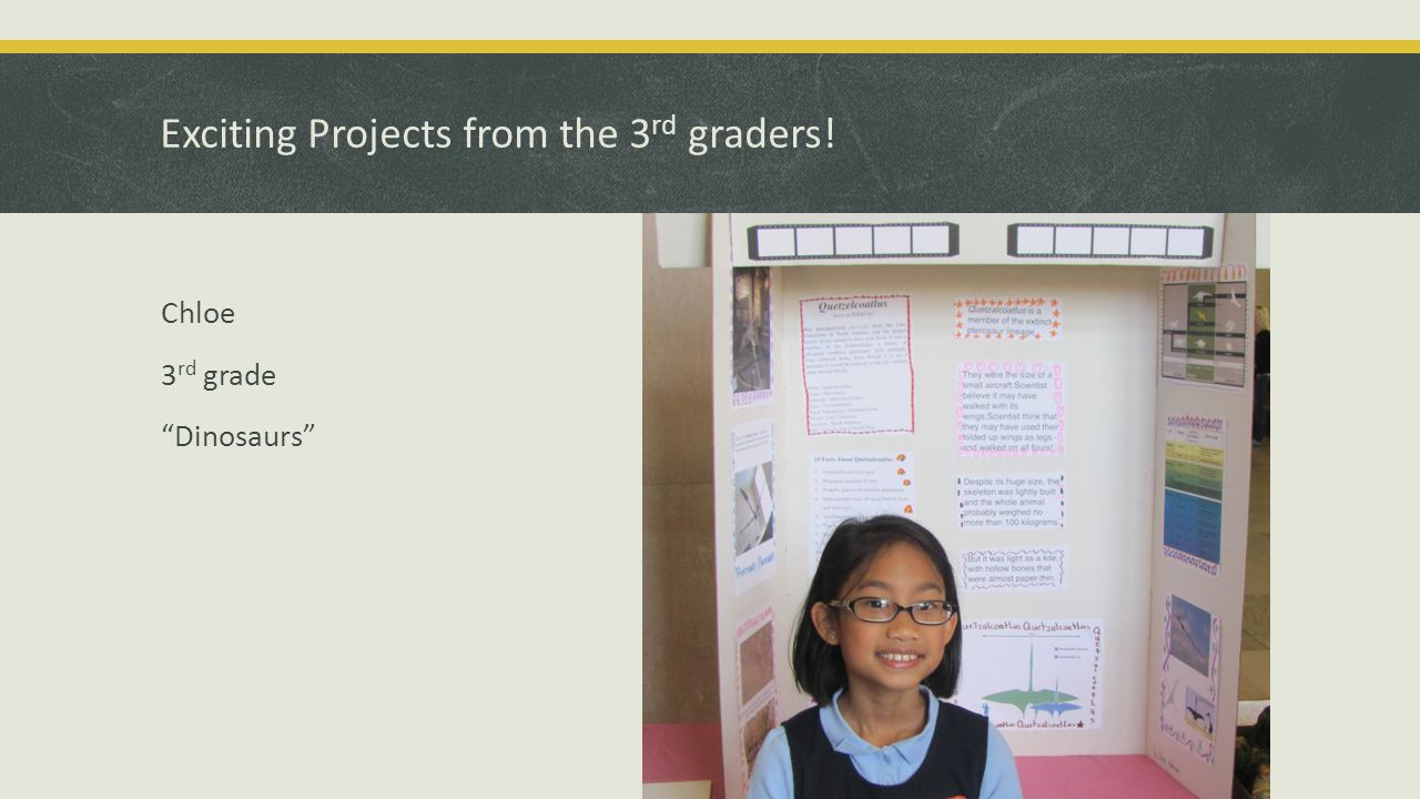 Exciting Projects from the 3 rd graders! Elena 3 rd grade Horses