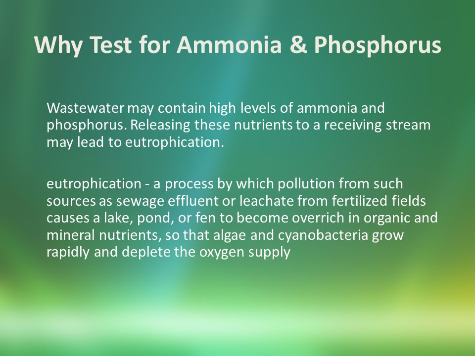 Why Test for Ammonia & Phosphorus Many new and renewal NPDES permits contain monitoring requirements for ammonia, phosphorus, and total nitrogen.