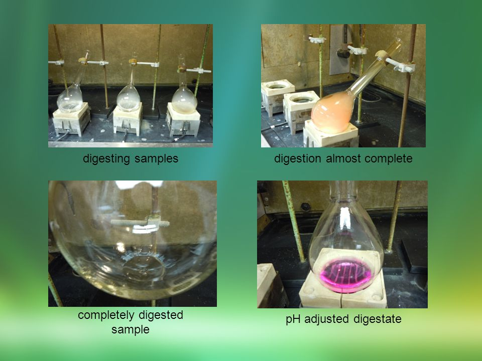 1.Transferring sample from Kjeldahl to flask 2.Nessler tubes with pH adjusted samples 3.Samples after adding colorimetry reagents 1.Transferring sample from Kjeldahl to flask 2.Nessler tubes with pH adjusted samples 3.Samples after adding colorimetry reagents
