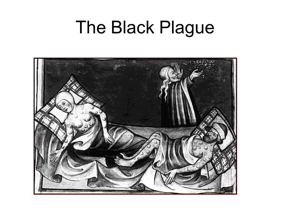 The Bubonic Plague 25 million people died in just under five years between 1347 and 1352.