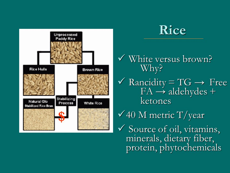 Distribution of rice bran fatty acid and total oil lipid content across a set of U.S.