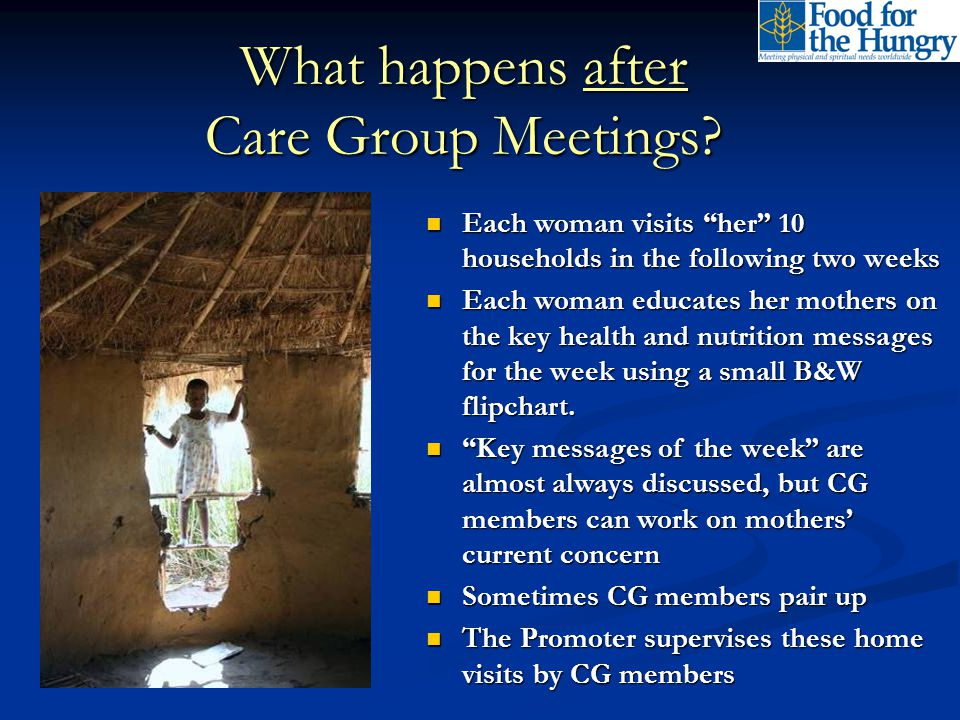 What services are provided through the Care Group structure (aside from health promotion).