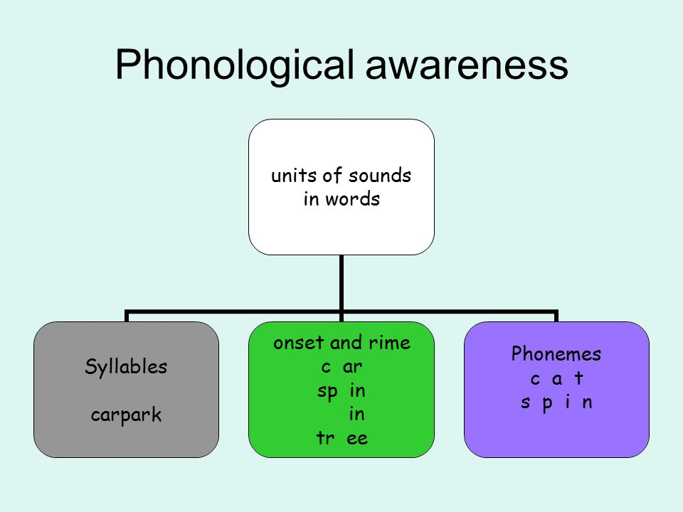 Alphabetic code Phonemes are represented by graphemes The skill of Blending (synthesising) READING The skill of Segmenting SPELLING C a t = cat Blending and segmenting are reversible processes Phonic knowledge and skills