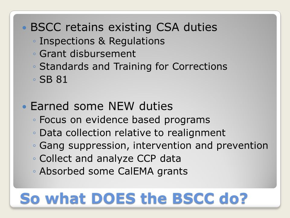 So what DOES the BSCC do? Creation of Juvenile Team ◦Rebecca, Toni and Allison Dedicated resources