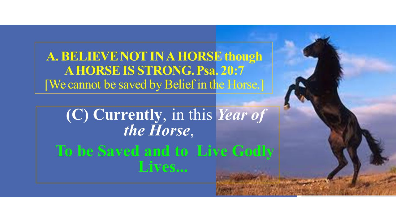 A.BELIEVE NOT IN A HORSE though A HORSE IS STRONG.Psa.