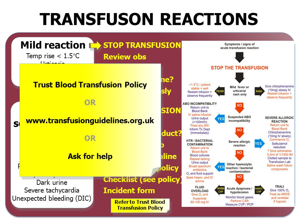 Yes Severe / life-threatening Call for urgent medical help Initiate resuscitation- ABC Discontinue transfusion and maintain venous access Monitor the patient : TPR, BP, urinary output, oxygen sats Anaphylaxis follow anaphylaxis pathway If bacterial contamination policy likely start antibiotic treatment Inform hospital transfusion department Return unit and administration set to transfusion Perform appropriate investigations