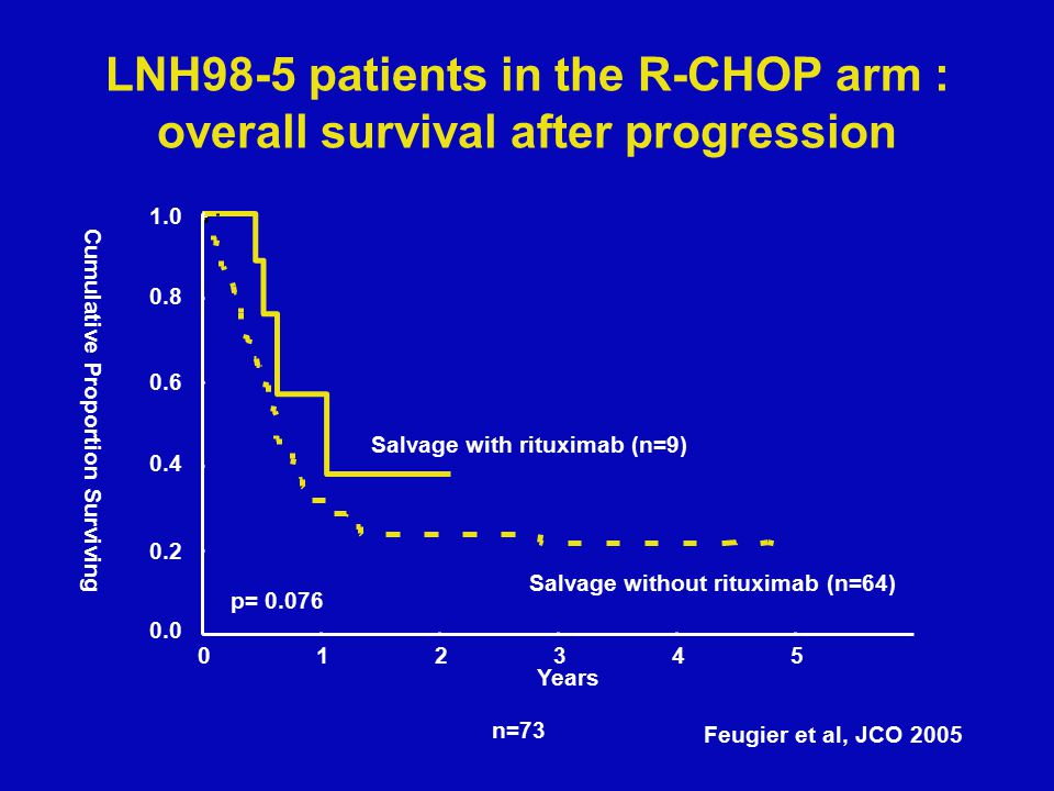 RegimenDisease statusnORR/CRSurvivalReference R-GEMHigh grade B-NHL (64–78 years) 771%/29%median PFS and OS, 10 and 11 months, (Wenger et al, 2005) R- GEMOX Aggressive NHL4674%/72%2-year EFS 43%, 2-year OS 66% (El Gnaoui et al, 2007) R-GIFOXAggressive NHL1377%/54%median FFS 80%(Corazzelli et al, 2006) GaRDAggressive NHL1979%/42%(Cabanillas et al, 2006) GaRDAggressive B-NHL2255%/27% (CR/CRu) (Smith et al, 2006) R + EDLBCL667%/50%(Leonard et al, 2005) R + EDLBCL1547%/33% (CR/CRu) median PFS 6 months (Strauss et al, 2006) R-CMDDLBCL (65–79 years) 3074%/57% (CR/CRu) 2-year OS 45%, PFS 37% (Niitsu et al, 2006) R-TTPAggressive NHL71 (32 primary refractory) 70% 25%primary refractory median DR 21 months (Younes et al, 2005) R-TTPB-cell lymphoma1060%/30%(Canales et al, 2005) R-ADOXDLBCL (heavily pre-treated) 2070%/25%Median OS 11 mos(Woehrer et al, 2005) Rituximab and other salvage regimens CMD: irinotecan, mitoxantrone, dexamethasoneTTP: paclitaxel, topotecan E: epratuzumab Gisselbrecht C.