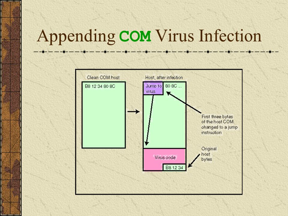 Overwriting COM Viruses The third technique used to infect COM files is known as overwriting.