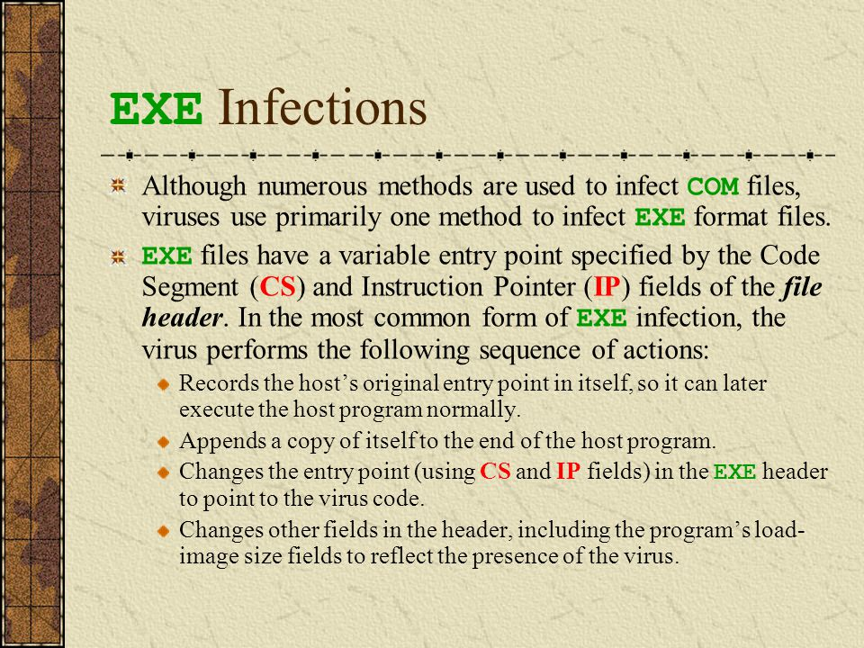EXE File before and after Infection