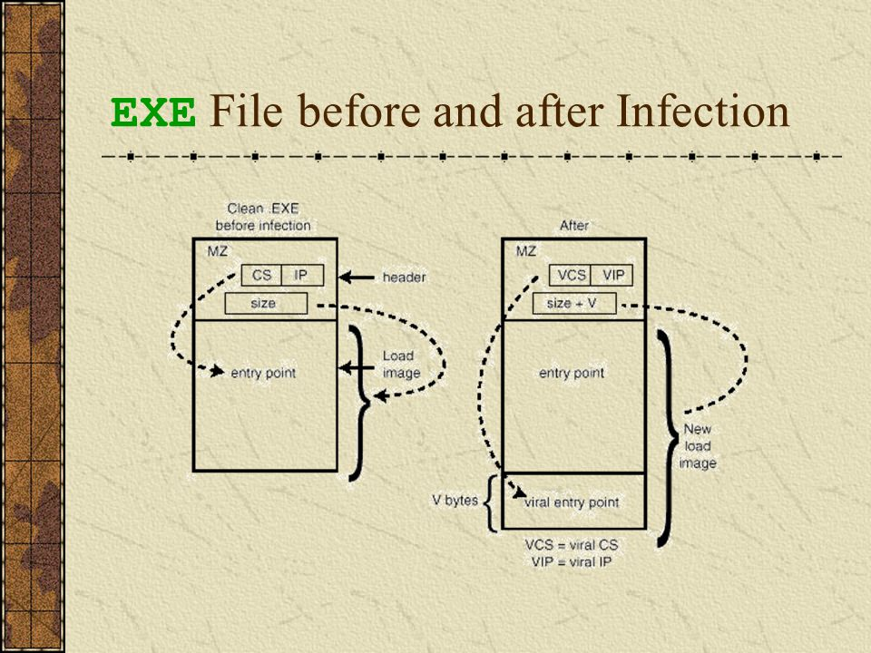 How and When the File-Infecting Virus Gets Control.