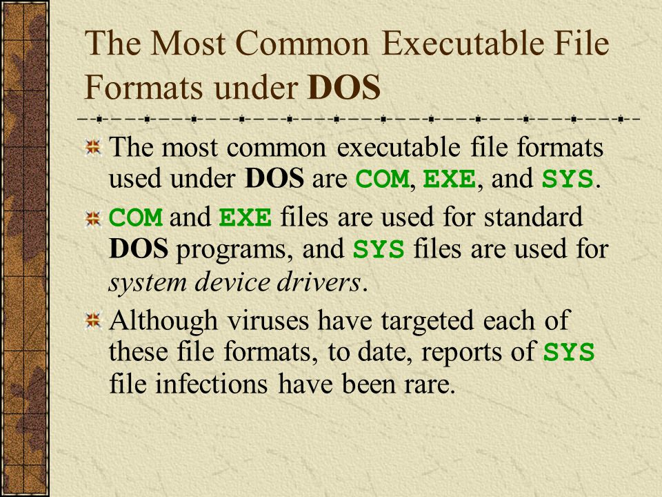 Entry Points of DOS Program Files A program file consists of data and machine language instructions interpreted directly by the computer's CPU.