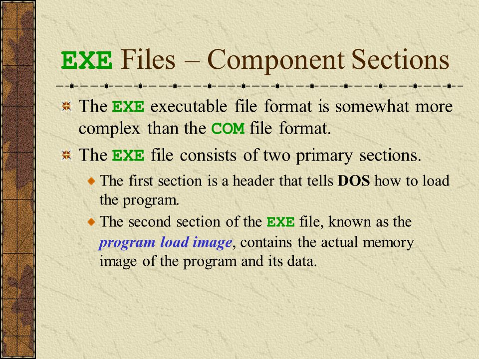 EXE Files – the Header Section The header includes two fields that identify the location of the EXE file's single entry point in the program: the Code Segment (CS) and the Instruction Pointer (IP).