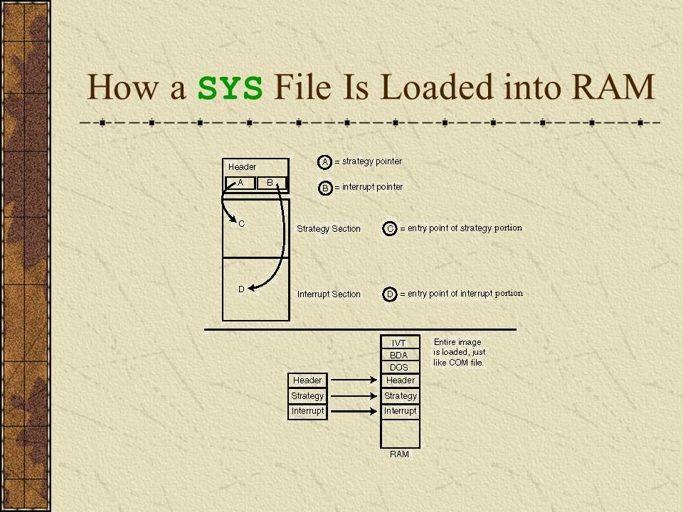Program Files and Viruses Program files are often targeted by viruses for two primary reasons.