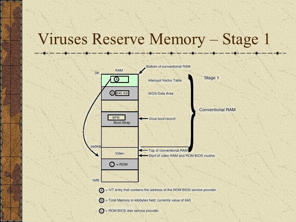 Viruses Reserve Memory – Stage 2
